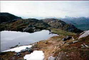 elgspeil-vaagfjellet