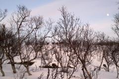 2012-03-05-010