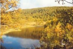 Stillvannet Finnvikdalen