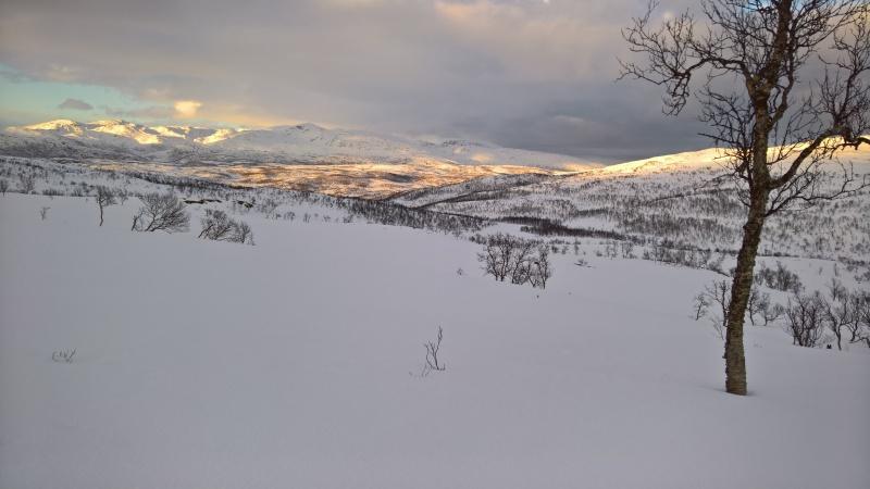 Jodalen-fra-Jogammen